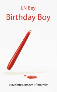 birthday boy cover kindle